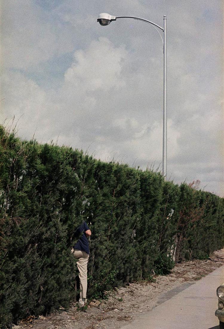 eltornillodeklaus-vivian-maier-man-bushes
