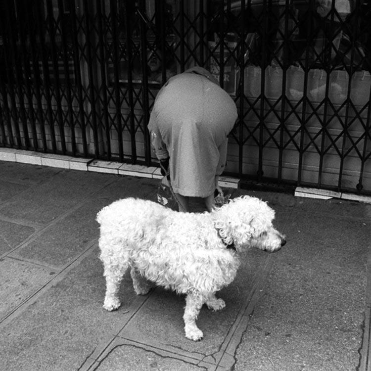 eltornillodeklaus-vivian-maier-woman-dog
