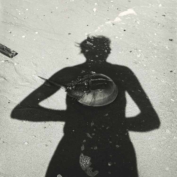 eltornillodeklaus-vivian-maier-woman-on-the-beach-crab