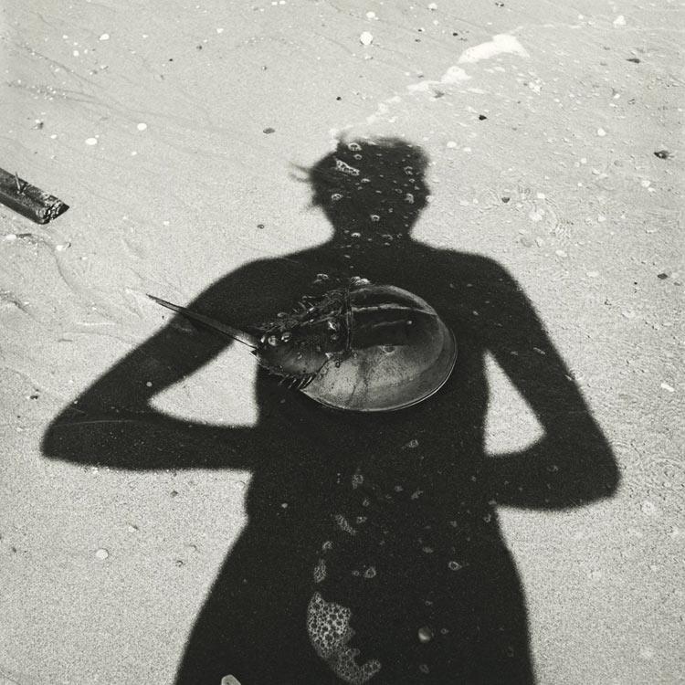 eltornillodeklaus-vivian-maier-woman-on-the-beach-crab