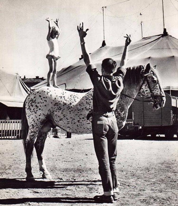 Ingmar Bergman linterna mágica