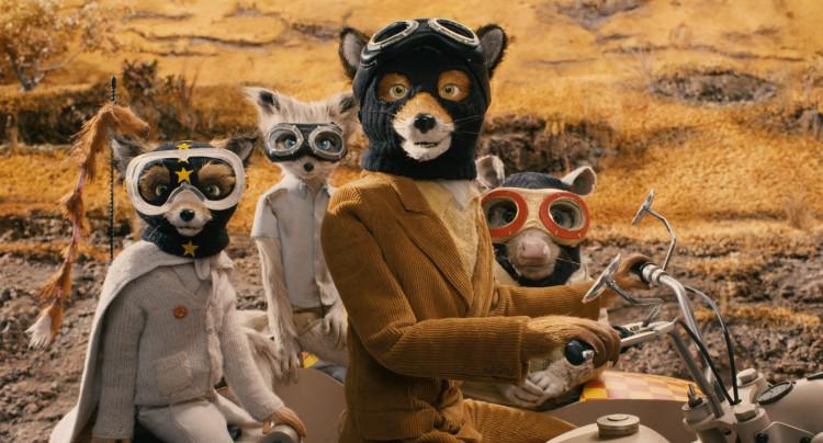eltornillodeklaus-La-crisis-de-mediana-edad-y-el-cine-hipster-de-Noah-Baumbach-wes-anderson-mr-fox